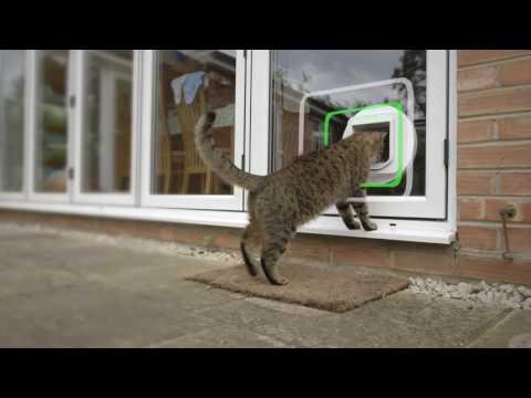 SureFlap Katzenklappe