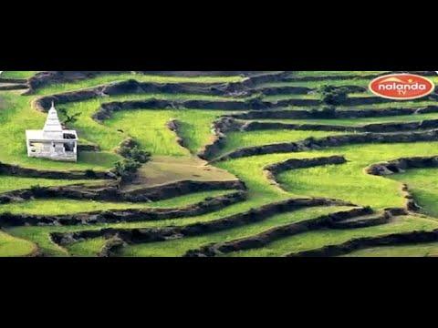 Ranikhet /  Uttarakhand / India.