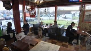 Лорд. Пёс-полицейский: сезон 1, серия 15