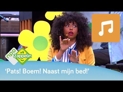 Zingen met Fenna van Zappelin: De droomboom