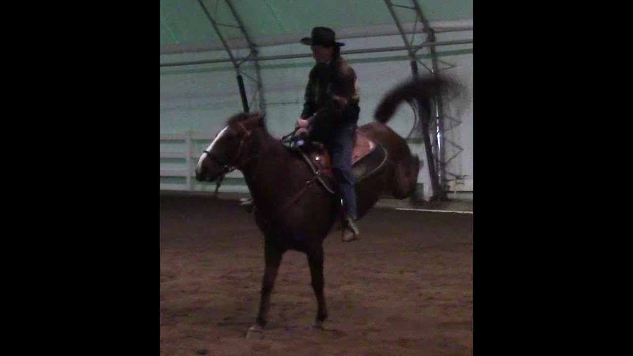Watch How to Stop a Horse That Tries to Buck video
