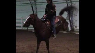 How to stop a horse from bucking Part 1 with Mike Hughes, Auburn California