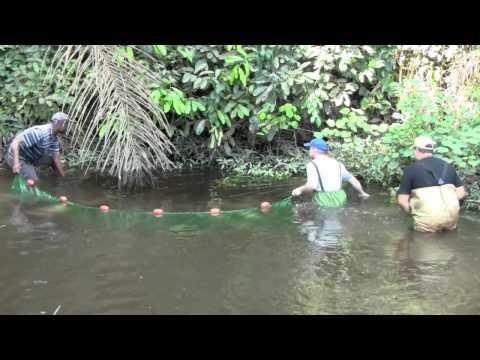Going Gabon - Makokou Part 2