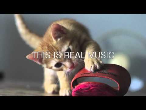 Stavroz - Robot Street Musicians