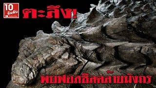 ตะลึง! พบซากฟอสซิลไดโนเสาร์คล้ายมังกร