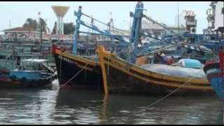 VTC14_Nhiều địa phương cấm tàu thuyền ra khơi cấm bão Hagupit