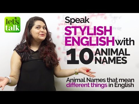 learn-multiple-english-expressions-with-'10-animal-names'-|-improve-you-english-fluency
