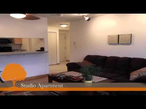 Auburn Apartments For Rent: Edgewater House