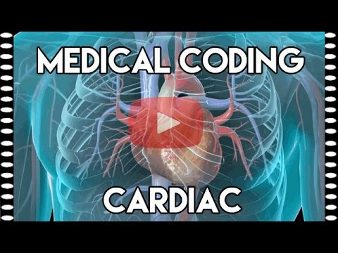 Cardiac Medical Coding Part 1: Basics and Terminology