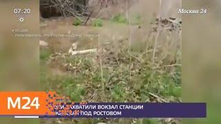 Смотреть видео Гадюки захватили вокзал станции Мишкинская под Ростовом - Москва 24 онлайн