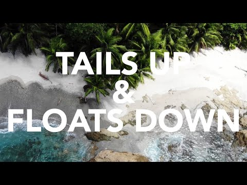 TAILS UP & FLOATS DOWN SPEARFISHING PANAMA