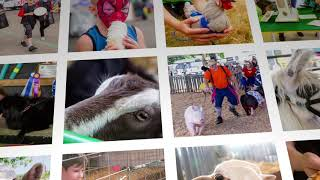 """Get Ready for the Clark County Fair """"Best Of"""" special this weekend"""