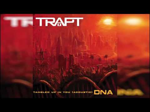 Trapt - Tangled Up In You (Acoustic) K-POP Lyrics Song
