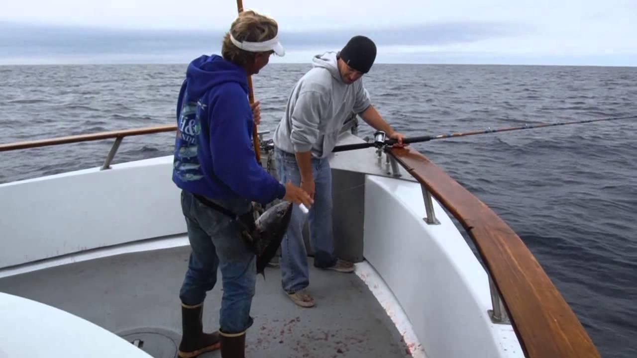 Big 160 lb striped marlin 8 20 2013 youtube for H m landing fishing report