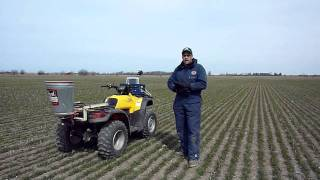 Planting Red Clover - the