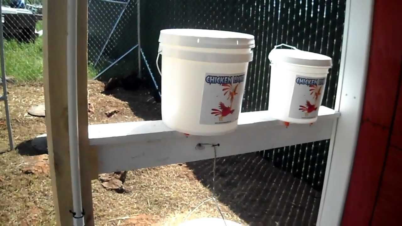 The Best Chicken Waterer Youtube