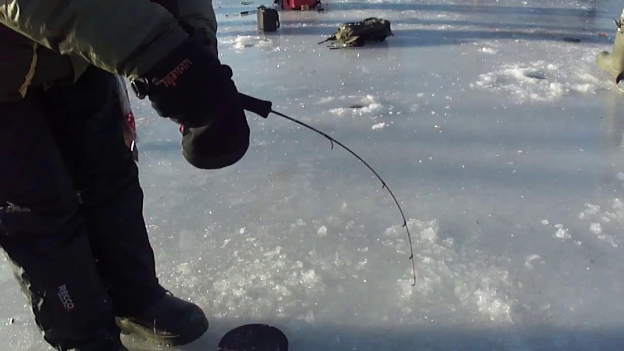 Подлёдная ловля на фидер зимой