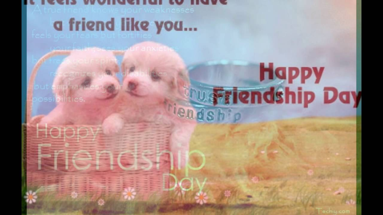 Quotes About Dog Friendship Happy Friendship Day Wishes Funny Best Friend Quotes Quote About