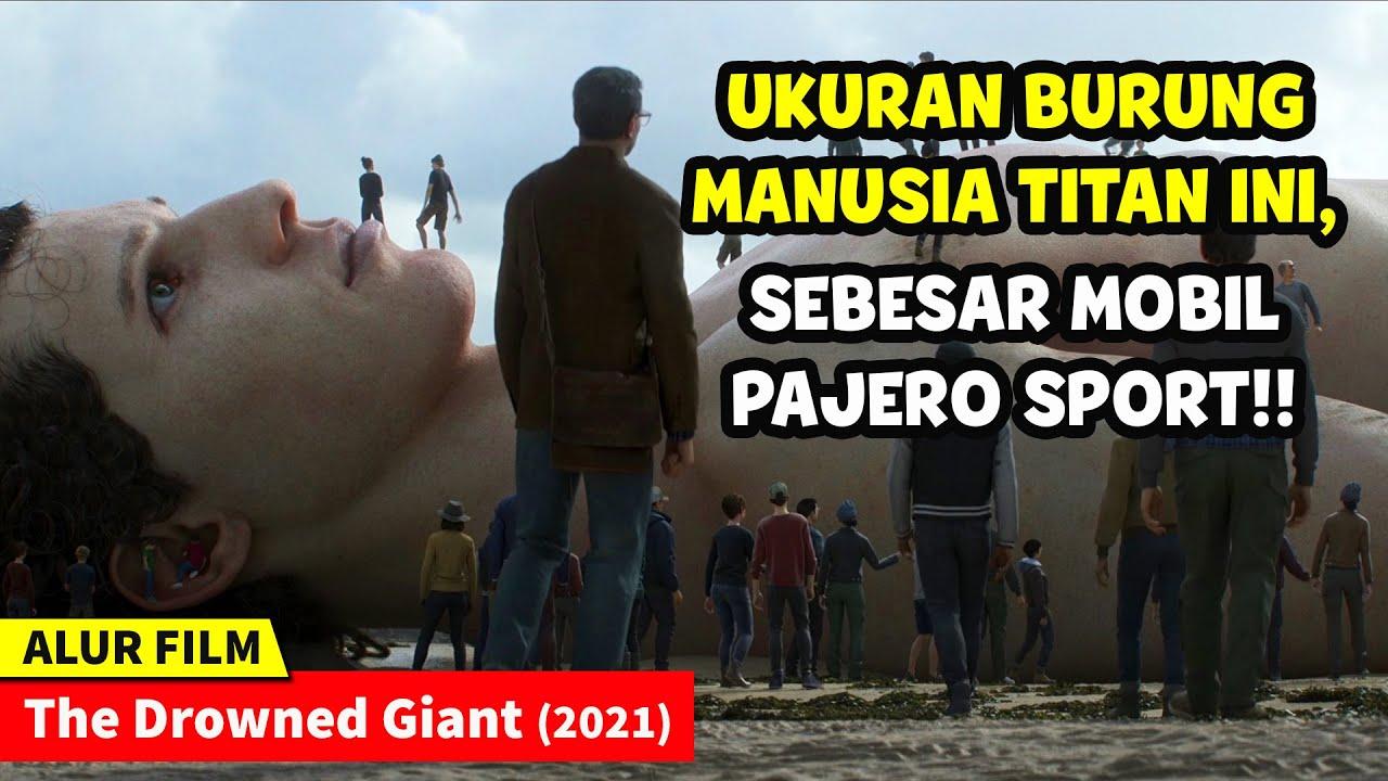 Download MAYAT MANUSIA RAKSASA TERDAMPAR DI TEPI PANTAI || Alur Cerita Film The Drowned Giant (2021)