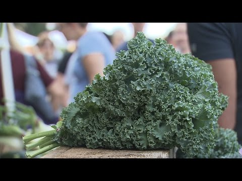 Kale | Iowa Ingredient