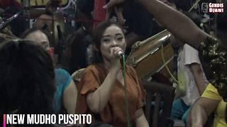 Download Lagu Opo Aku Salah Yen Aku Ctito Opo Anane Mp3 Planetlagu