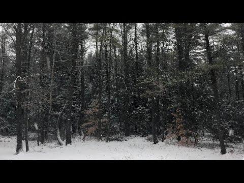 P C III - Snow Ticket (Creative Commons Instrumental Music)