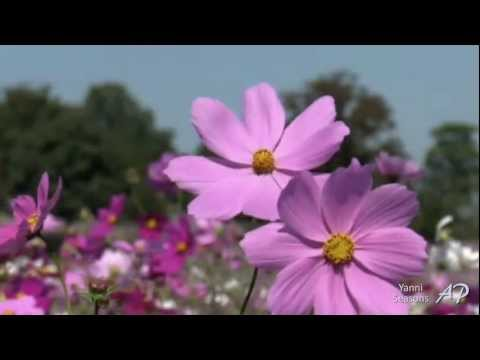 ♥ YANNI - Truth Of Touch - Seasons ♥