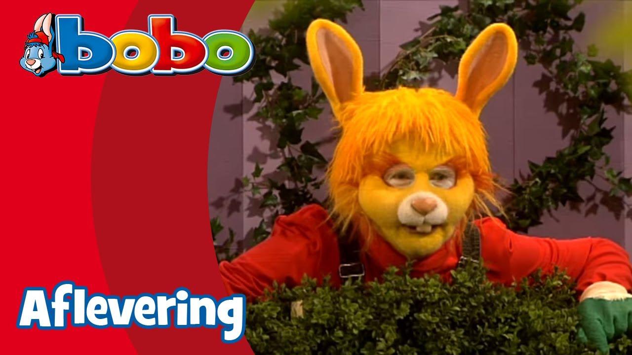 Knorrepot Bobo Aflevering