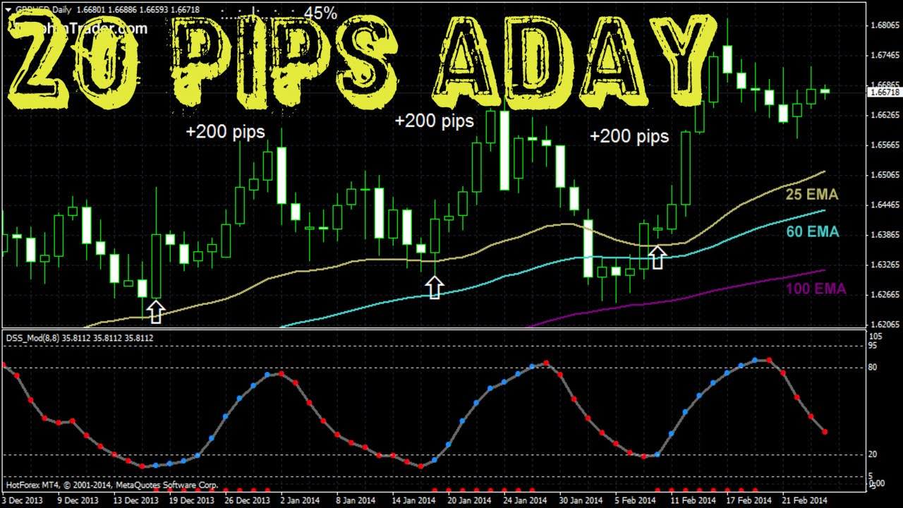What is a pip in forex trading