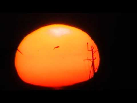 ENSENADA BAJA SUNSET- SUNSPOTS - 01/11/2014