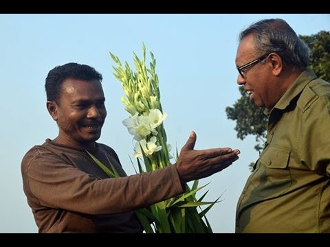 The flower kingdom of Bangladesh (Happy New Year 2017)