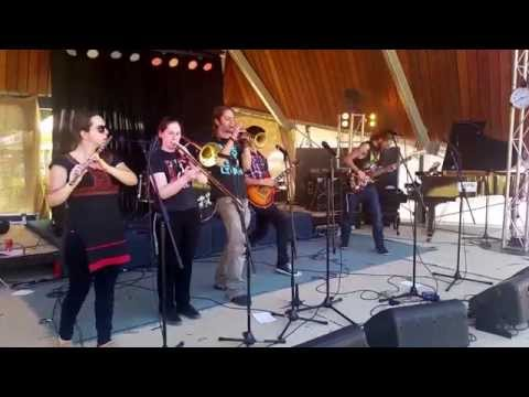 Kujo Kings at The Basin Music Festival 2