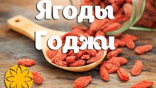 Годжи ягоды (Goji) Amideya.com.ua