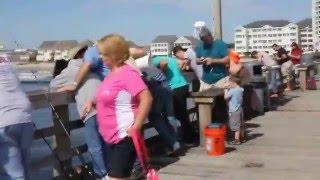 Cherry grove pier fishing report for Cherry grove pier fishing report