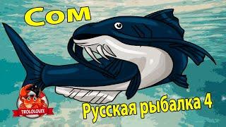 Русская рыбалка 4 В поиске Сома