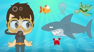 Aquatic Animals in English for Kids - الحيوانات للأطفال - حيوانات البحر باللغة الإنجليزية للاطفال