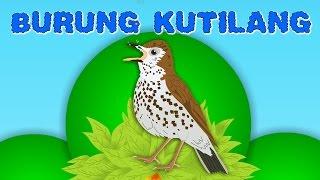 Burung kutilang +8 lagu anak-anak | Kumpulan | Medley 15 minutes | Lagu Anak TV