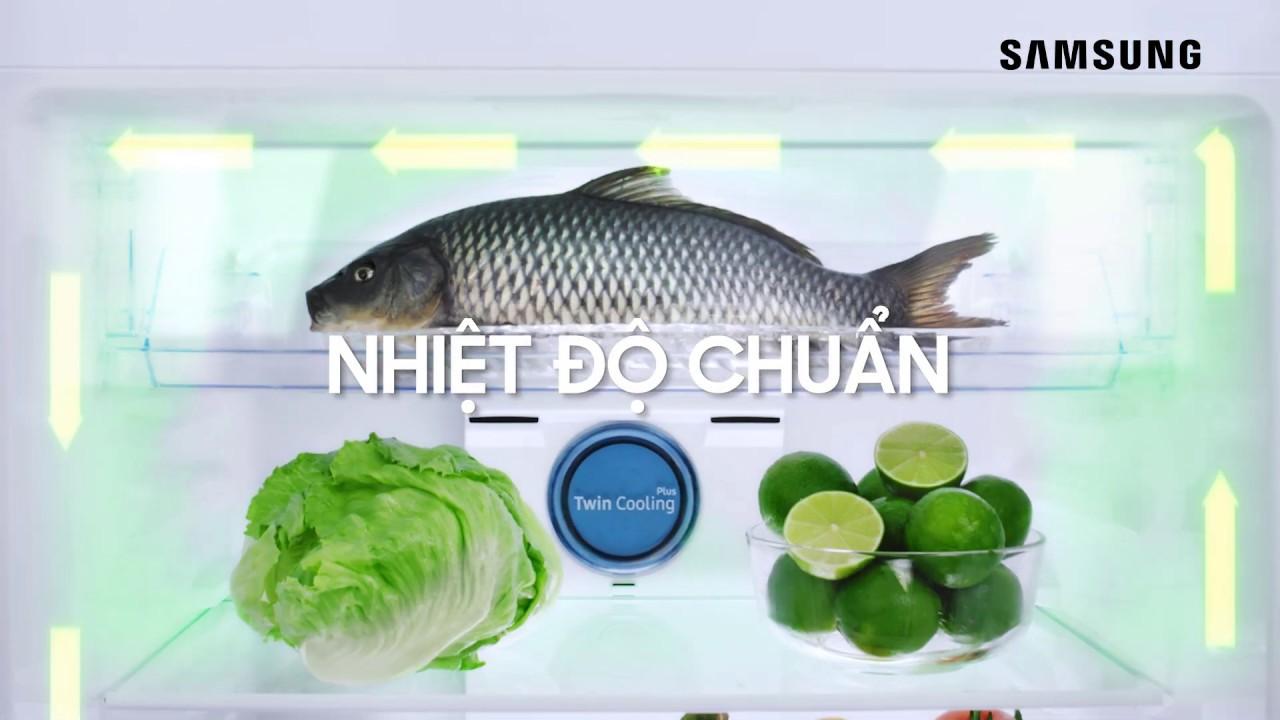 Tủ Lạnh Samsung - Công Nghệ Đột Phá Giữ Trọn Tươi Ngon