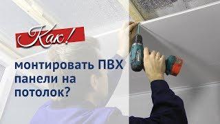 ПВХ панели для потолка. Как монтировать самостоятельно.