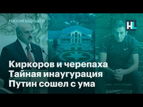 Киркоров и черепаха,