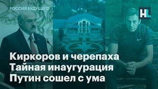 Киркоров и черепаха, тайная инаугурация, Путин сошел с ума