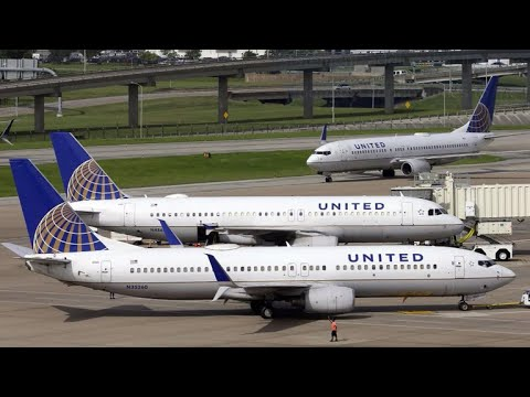 Dog dies on United flight after flight attendant tells owner to place it in overhead bin