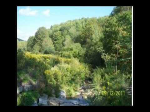 Land Hunting Leases Available NY State