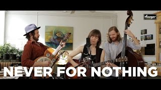 "The Stray Birds - ""Never For Nothing"""