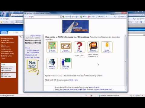 8. Entorno visual NetTutor