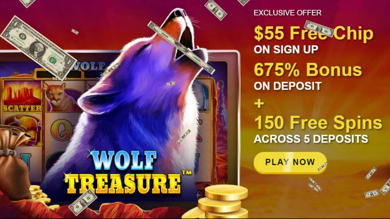 Winner Club Casino Review
