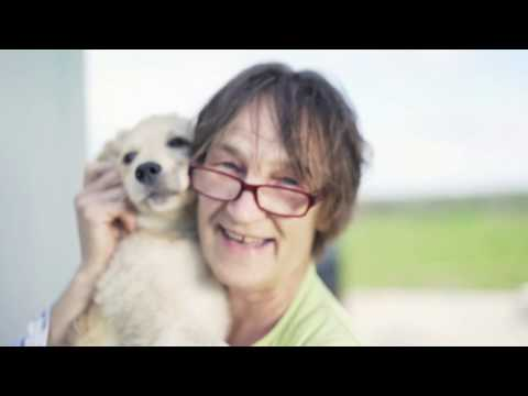 RESERVATION ANIMAL RESCUE, A Program Of Partnership With Native Americans