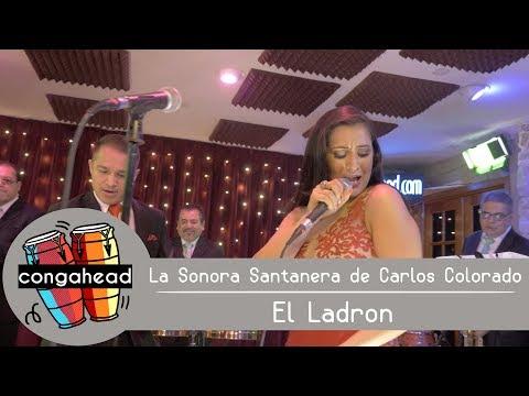 La Sonora Santanera de Carlos Colorado performs El Ladron