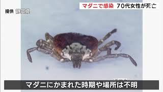 マダニで感染 女性死亡 日本紅斑熱を発症 県内で2019年初めての死者 伊豆の国市