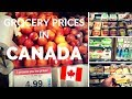 Food Prices in Canada | Costs of Living in Canada | Supermarket Tour in Ottawa, Ontario, Canada